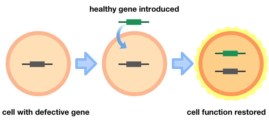 DIY Gene Therapy: A New Trend in Biohacking • theGIST